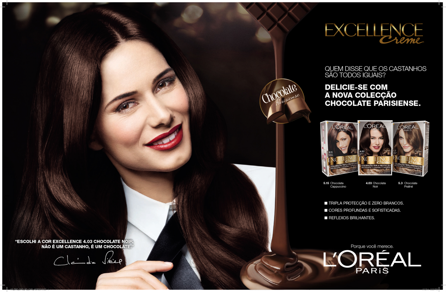 pf2013_LOreal Excellence